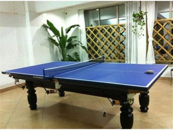 乒乓球桌 (5)